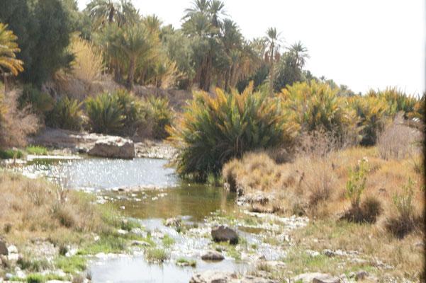 Ueberquerung des Oued de Ziz