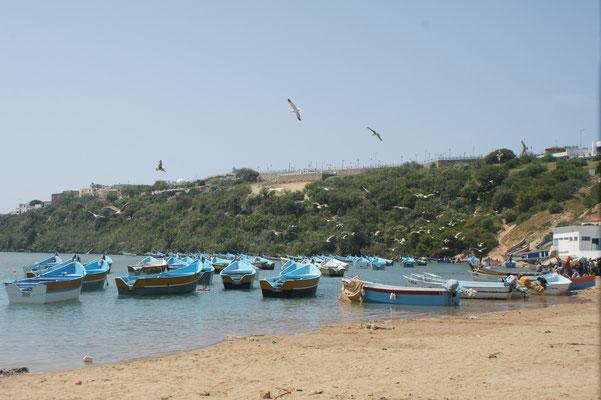 Die Fischerboote