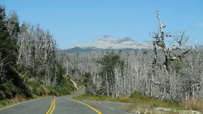 Auf dem Weg auf den Pass, sieht man gut die zerstörerische Arbeit des Vulkans