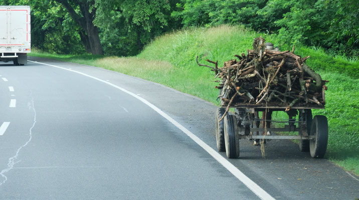 Auch kleinere Fuhrwerke benutzen die Autopista