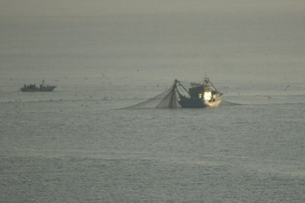 Morgens in der Frühe. Die Fischer in Cala Iris