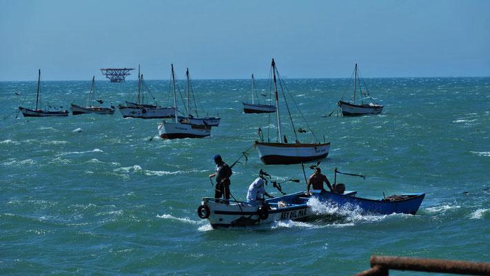Ziemlich anstrengend bei diesem Wind und den Wellen