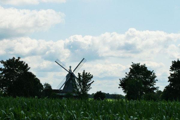 Windmühlen am Weg