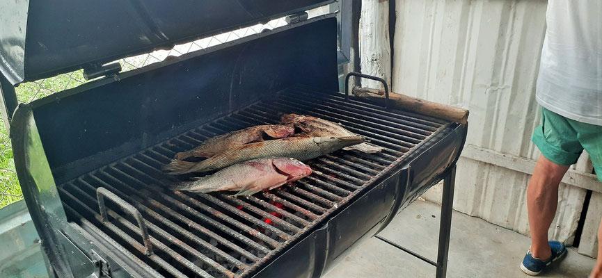 Leckern Fisch auf dem Grill...