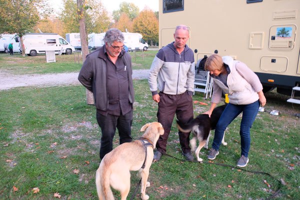 Brigitte und Rene mit seinen zwei Hunden weilt zur Zeit in Hüfingen.