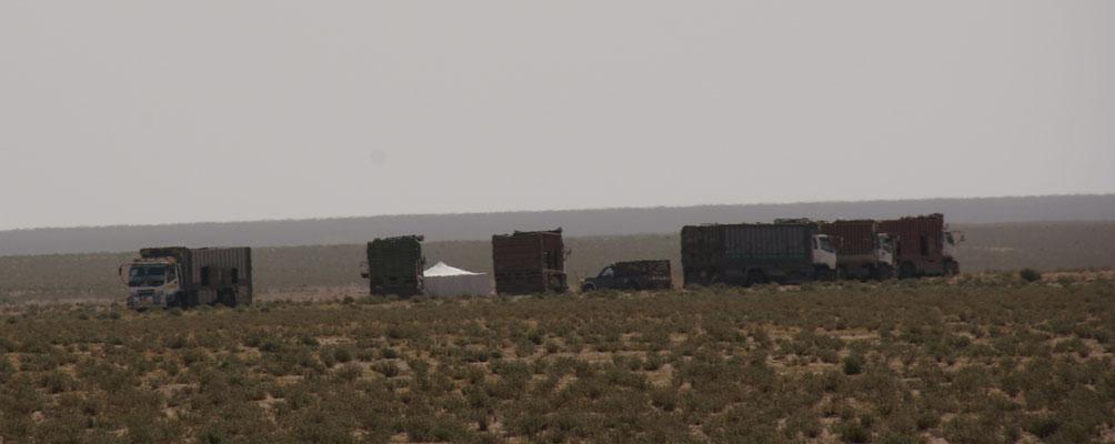 Endlich am Ziel die modernen Nomaden