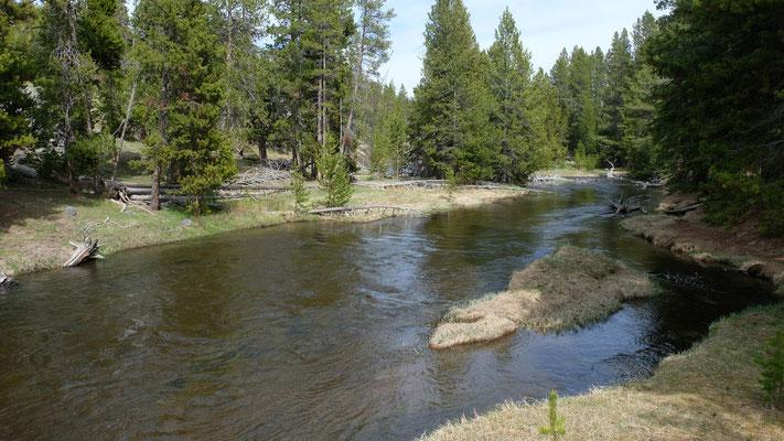 Der Yellowstone River