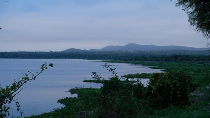 Morgenstimmung am See mit Blick ins Pantanal...