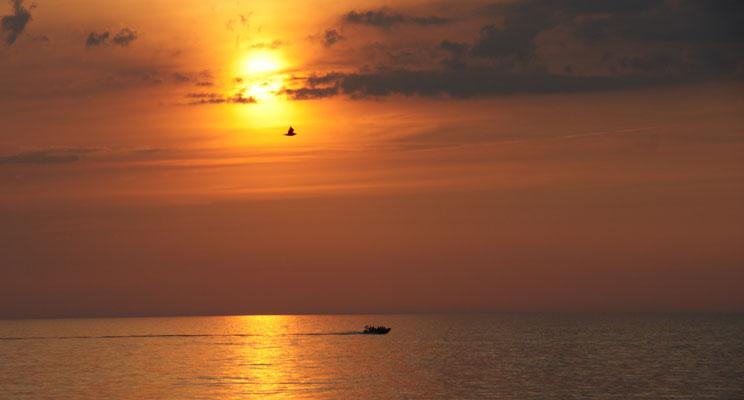 lange mit mehr erlebt. Wir geniessen den Blick in Rowy auf die Ostsee um so mehr.