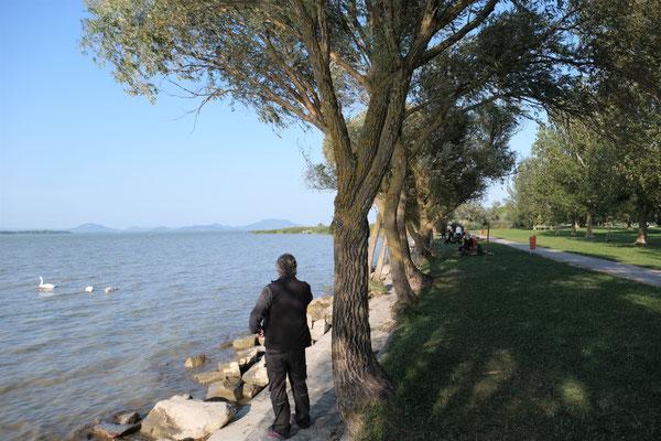Die Weite des Balaton