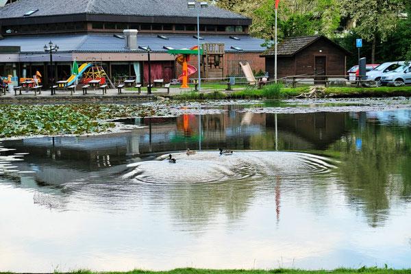 Beim Campingplatz am Schützenweiher in Winterthur, Schweiz