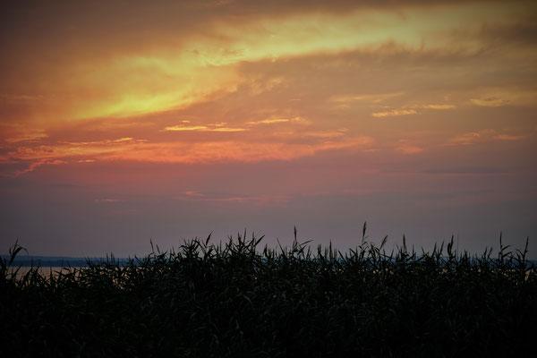 Der Sonnenuntergang am Balaton entschädigt uns für die Regengüsse des Tages