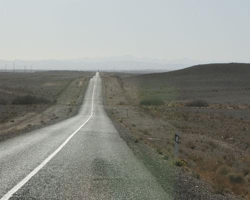 Wieder in der weiten Steinwüste