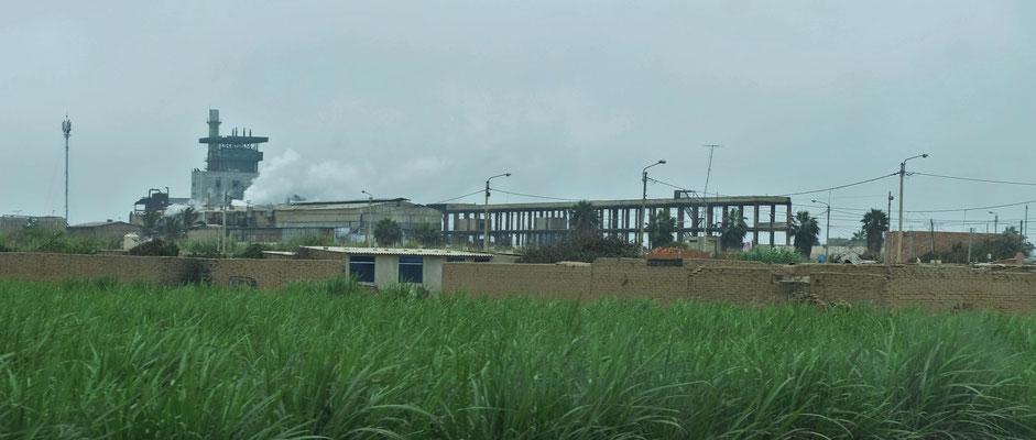 Eine Zuckerrohrfabrik direkt bei den riesigen Plantagen