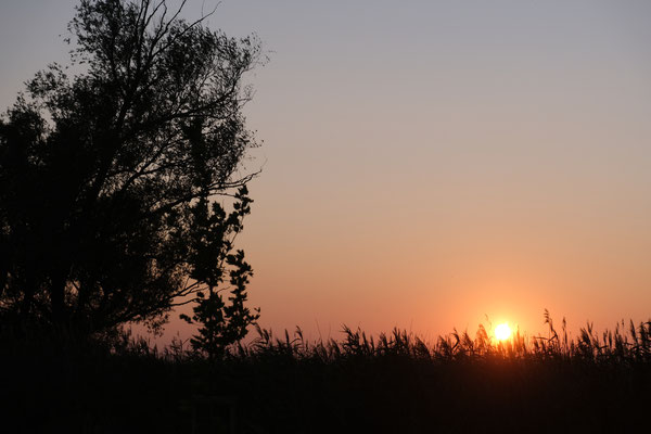 Der letzte Sonnenuntergang vor der Heimreise