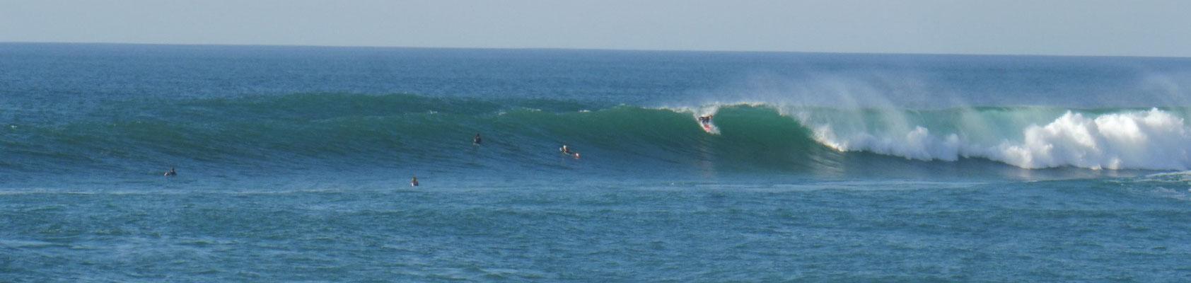 Die Surfer sind unermüdlich.