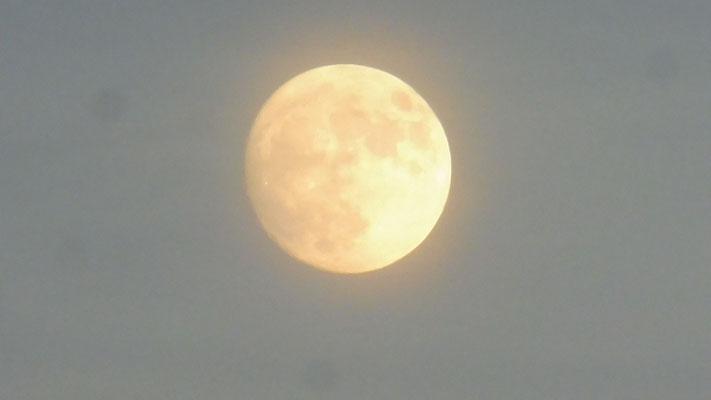 Der Mond zeigt sich von seiner besten Seite