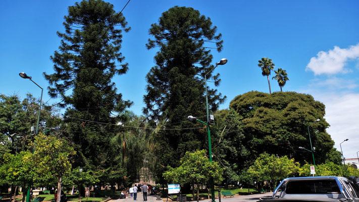 Der Park im Zentrum von Salta
