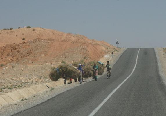 Die fleissigen Frauen vor El- Haj