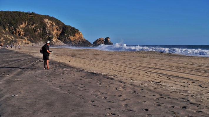 ... den man gut sichtbar vom weissen getrennt am Pazifikstrand sieht.