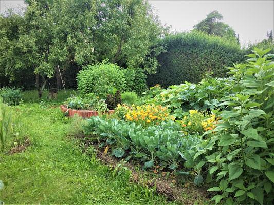 """Blick in den """"Knie-HochBeet-Garten"""""""