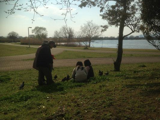 鳩とたわむれる子どもたち。