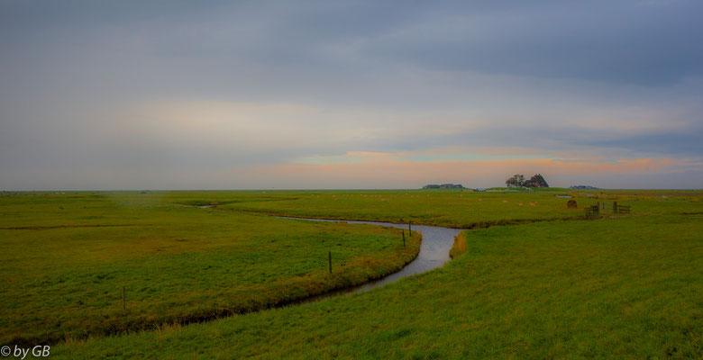 Nordsee - Hallig Hooge