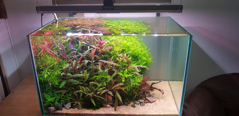 AQUASCAPE ARGENTINA