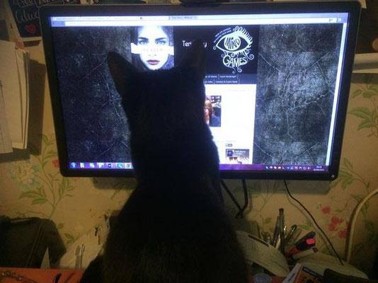 Kathy's digital kitten: I like it!
