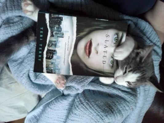 Rachel's incredible book eating kitten