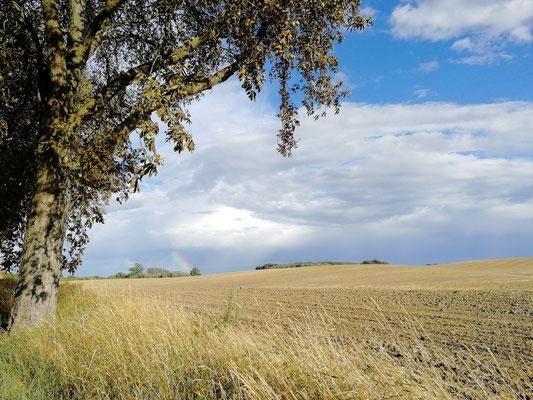 Weite Felder mit atemberaubender Aussicht