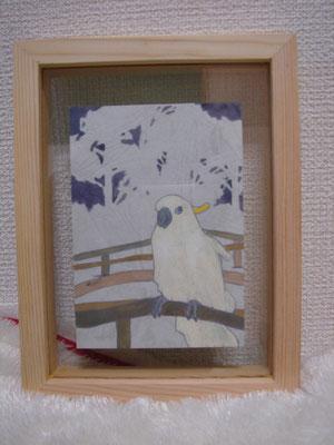 白い鳥   ★