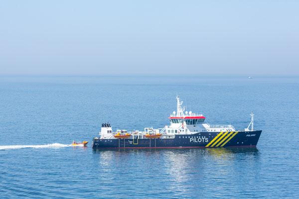 Lotsen Sammelschiff vor Antwerpen