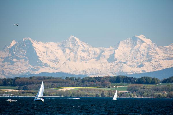 Neuenburgersee Blick Richtung Eiger, Mönch umd Jungfrau