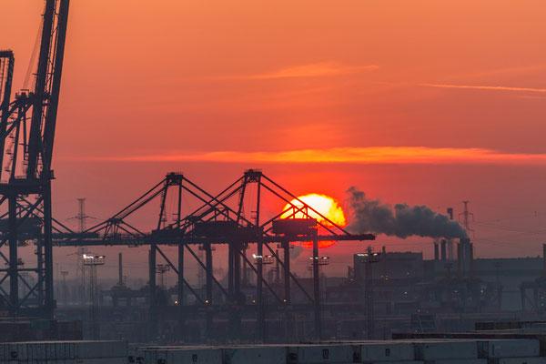 Guten Morgen Antwerpen