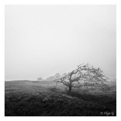 """#0057  """"Fog of loneliness"""" (Esbjerg, ,Denmark, 2018)   Ltd of 10"""