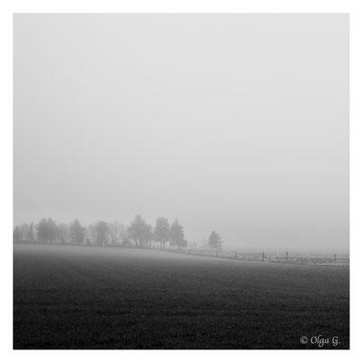 """#0047   """"Misty morning """" (Esbjerg-Guldager, Denmark, 2018)   Ltd of 10"""
