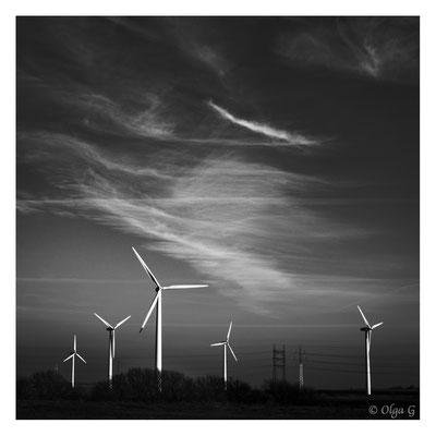 """#0030   """"Landscape with Windmills"""" (Esbjerg, Måde, Denmark 2019)    Ltd of 10"""