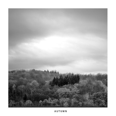 "#0046 ""Seasons: Autumn   Ltd of 5"