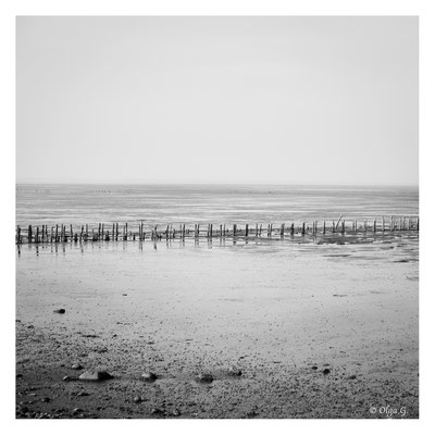 "#0008 "" Low Tide II""  ( National Park Vadehavet, Rømø, 2019)   Ltd of 10"