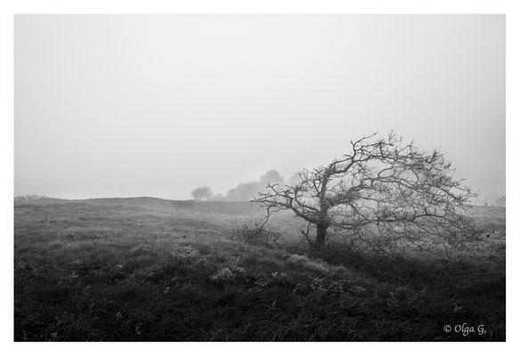 """#0049 """" Fog of loneliness"""" (n I full frame edition) (Esbjerg, DK, 2018)   Ltd of 10"""