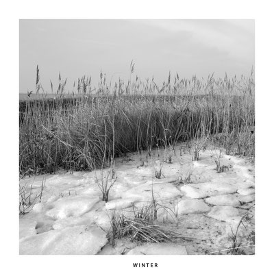 "#0042 ""Seasons"" : Winter Ltd of 5"