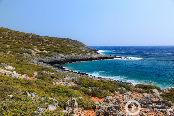 Coast of Antikythira