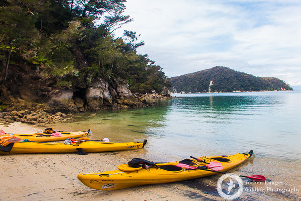 Kayaking at Abel Tasman National Park