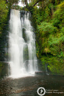 McLean Falls at Catlins Forest Park