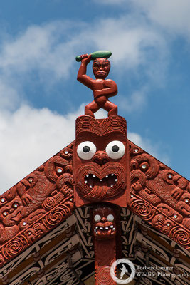 Moari culture at Whakarewarewa Village in Rotorua