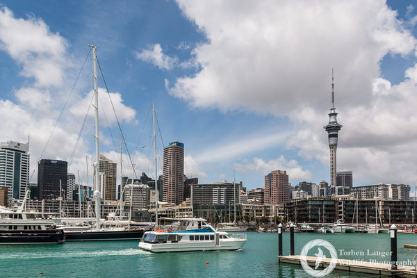 A marina in Auckland
