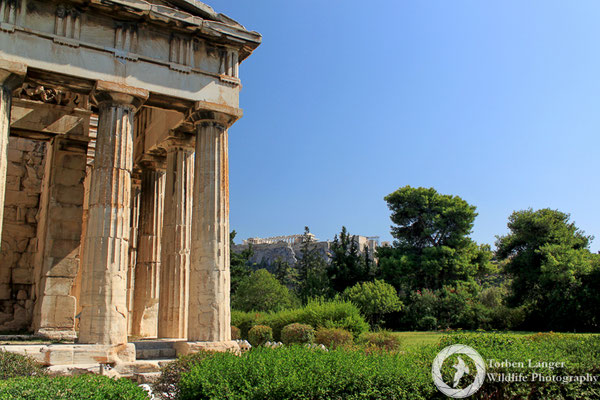 Ancient Agora with the Acropolis
