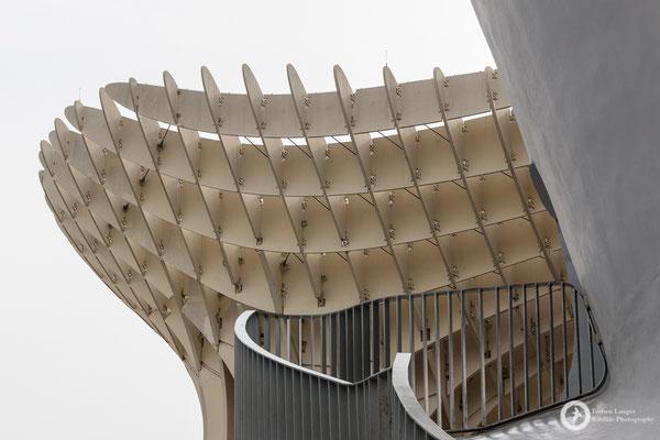The Metropol Parasol in Sevilla