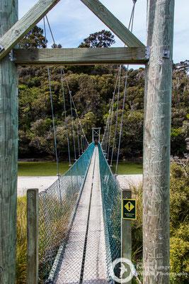 Rakiura Track on Stewart Island